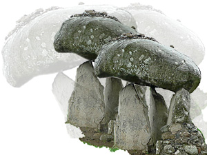 irish dolmen mushrooms